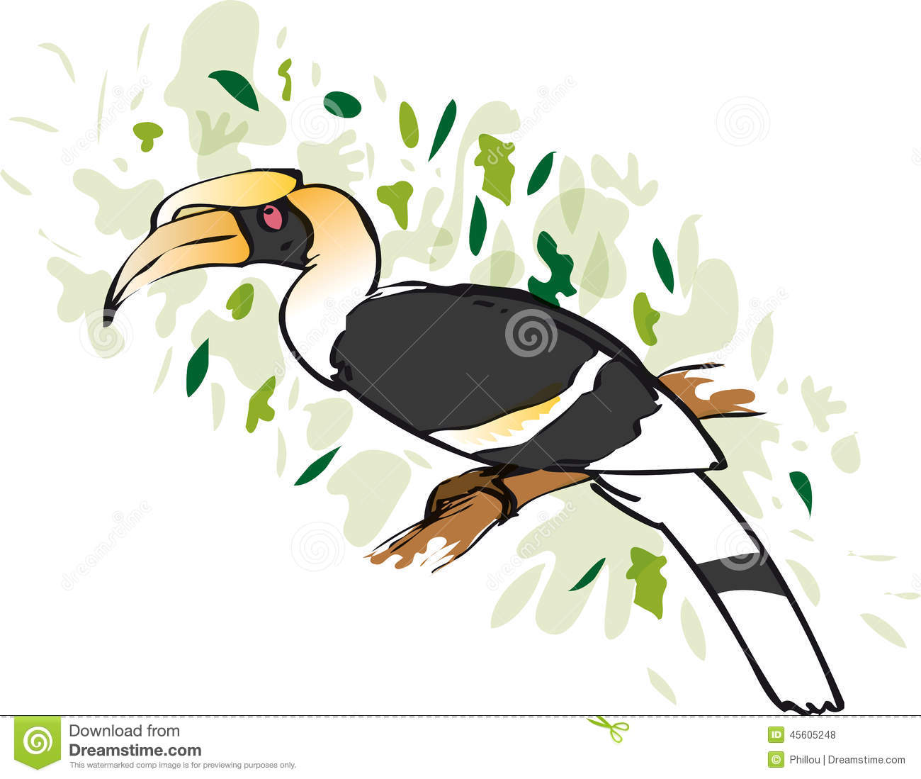 Rhinoceros Hornbill clipart #6, Download drawings