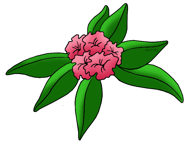 Rhododendron clipart #7, Download drawings