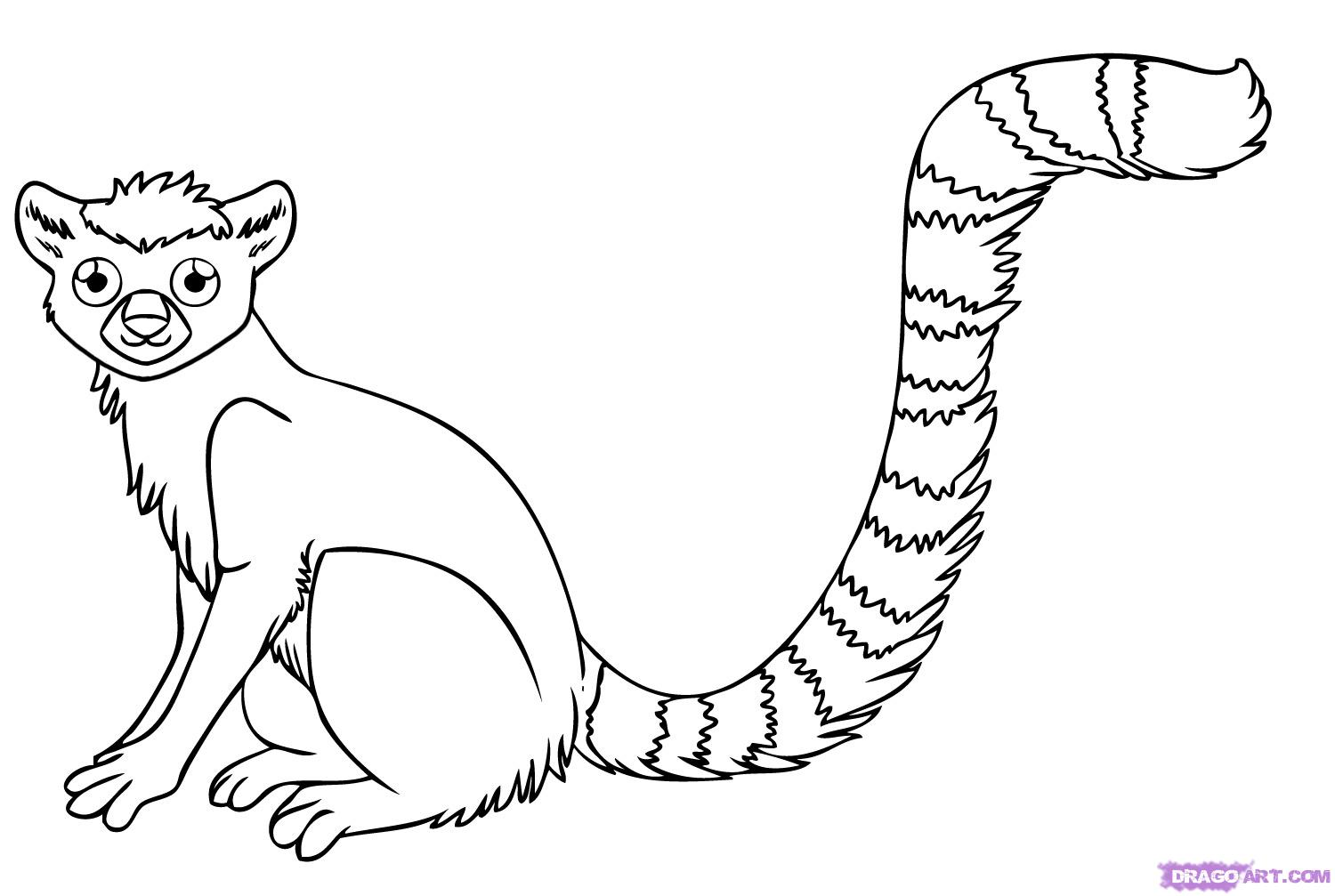 Ring-tailed Lemur coloring #10, Download drawings