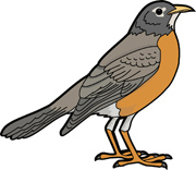 Robin clipart #12, Download drawings