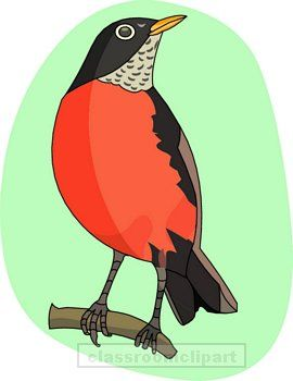 Robin clipart #10, Download drawings