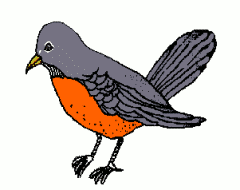 Robin clipart #1, Download drawings