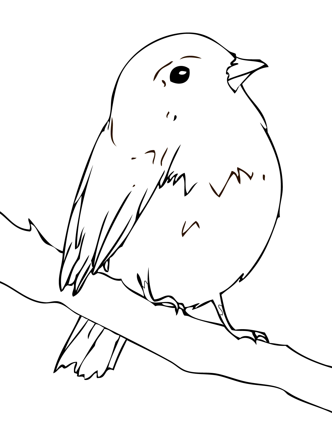 song birds coloring pages - photo#20