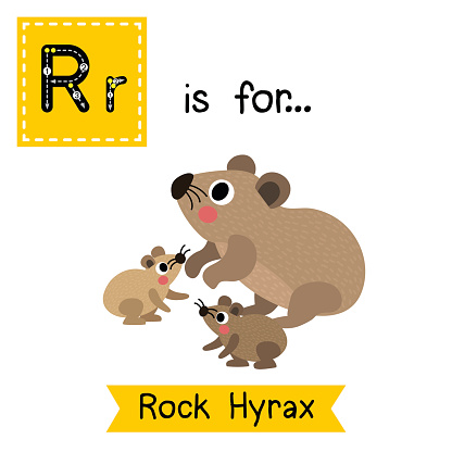 Rock Hyrax clipart #13, Download drawings