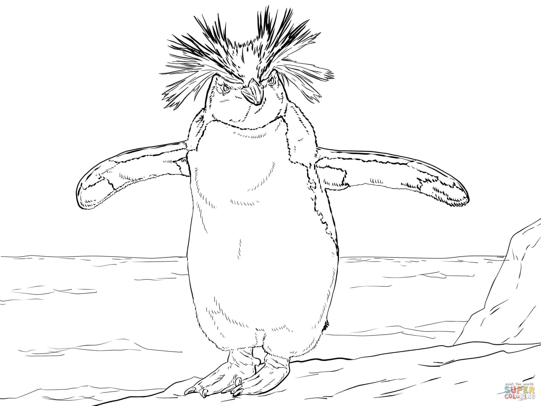 Rockhopper Penguin coloring #18, Download drawings