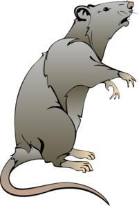 Rodent clipart #17, Download drawings
