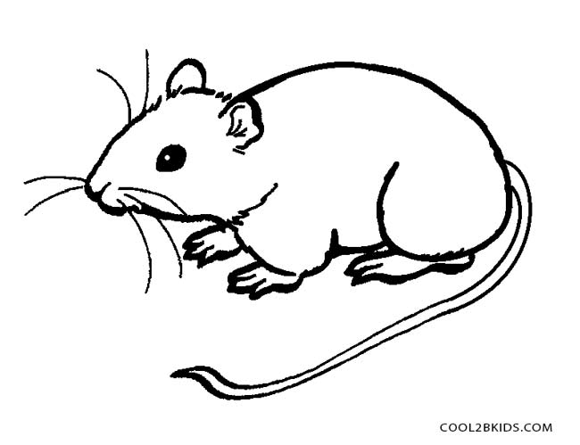 Rodent coloring #9, Download drawings