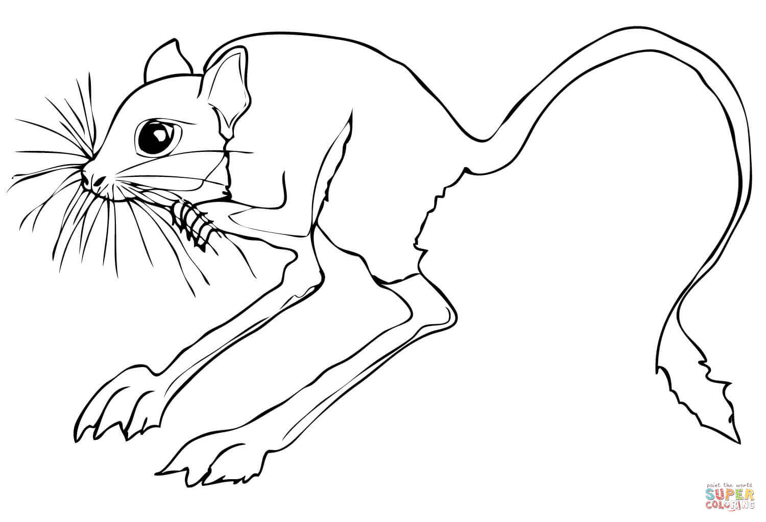 Rodent coloring #5, Download drawings