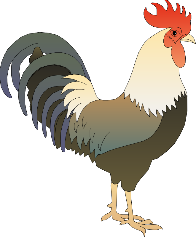 Rooster clipart #14, Download drawings