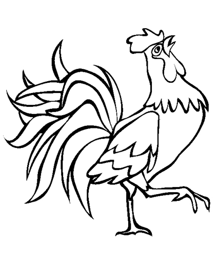 Rooster coloring #1, Download drawings
