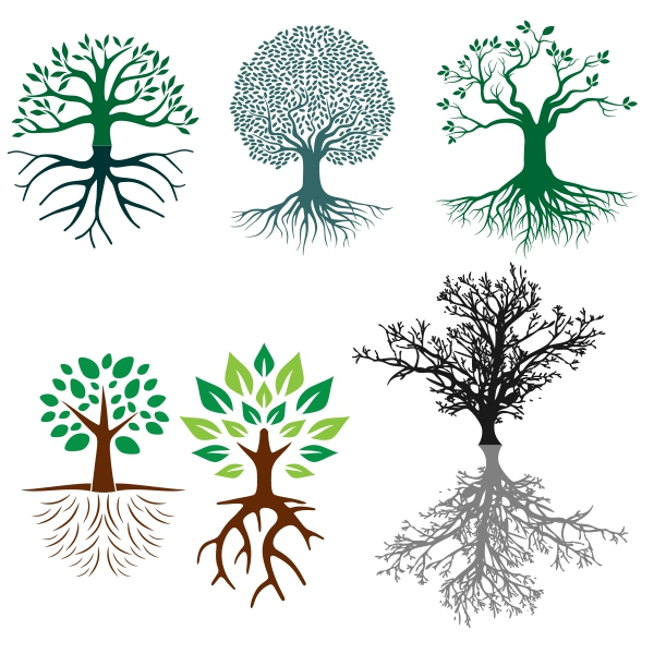 Tree Root svg #19, Download drawings