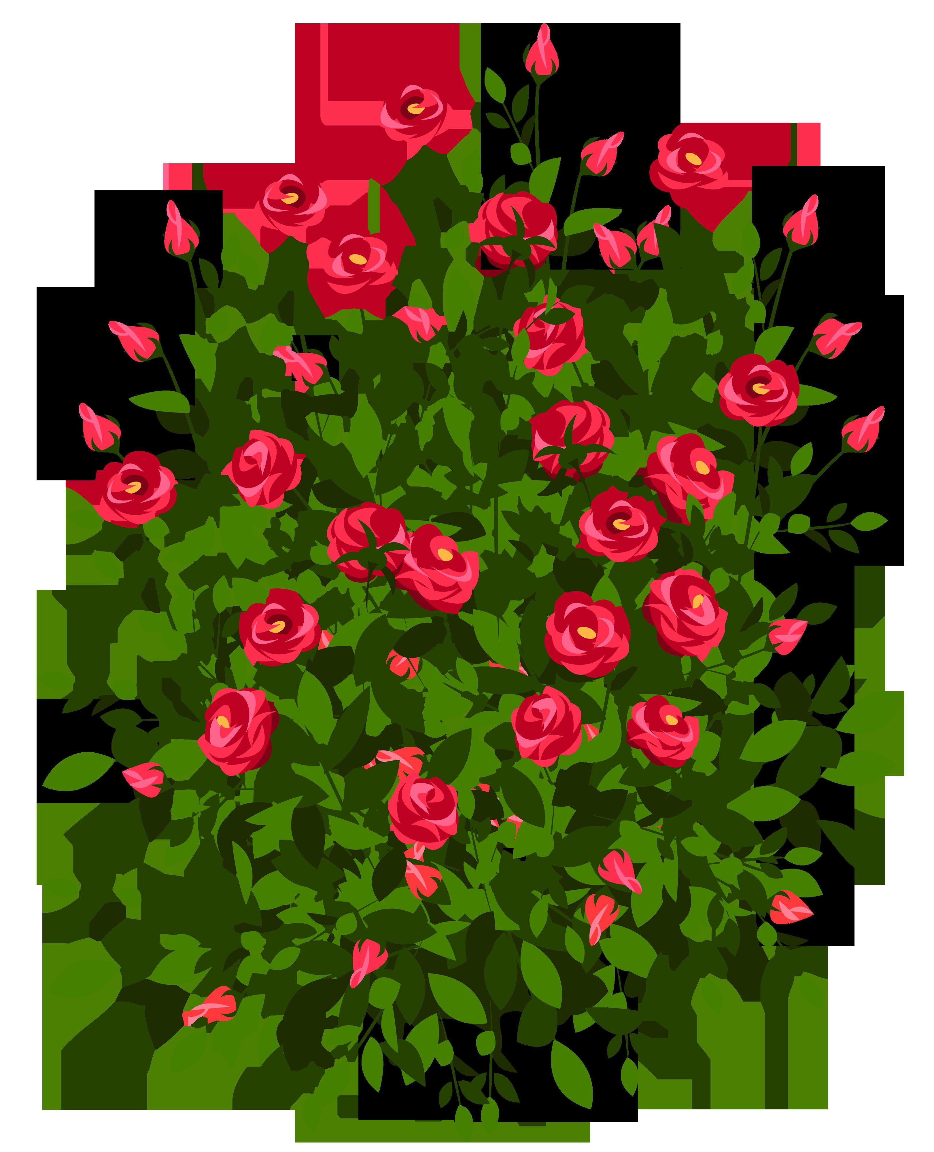 Rose Bush clipart #2, Download drawings