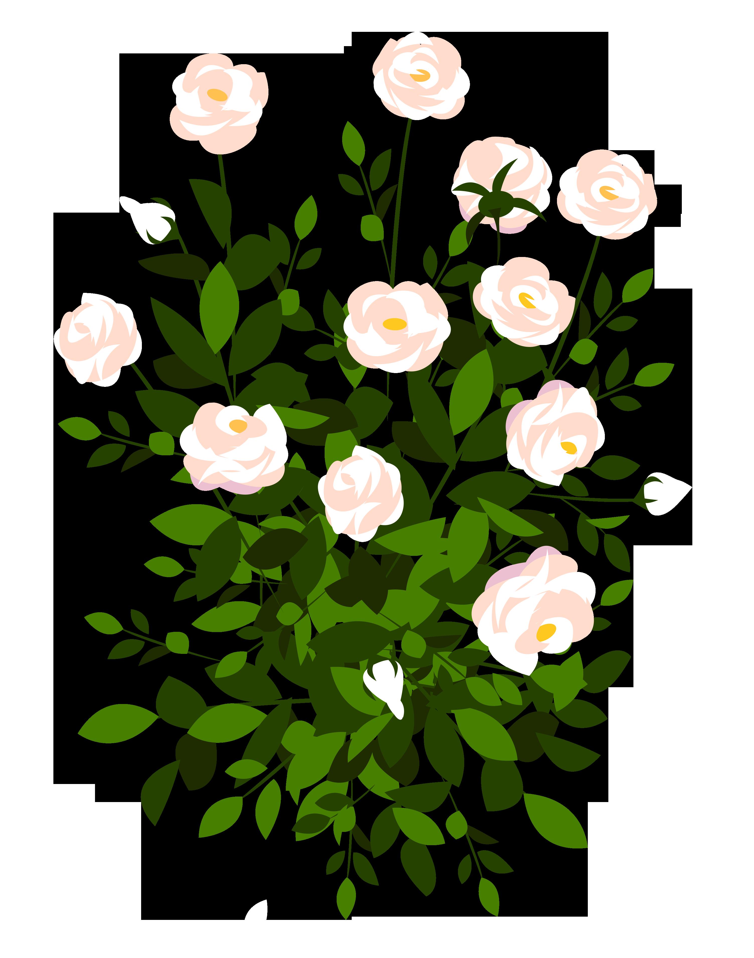 Rose Bush clipart #9, Download drawings