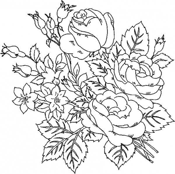 Rose Bush coloring #13, Download drawings