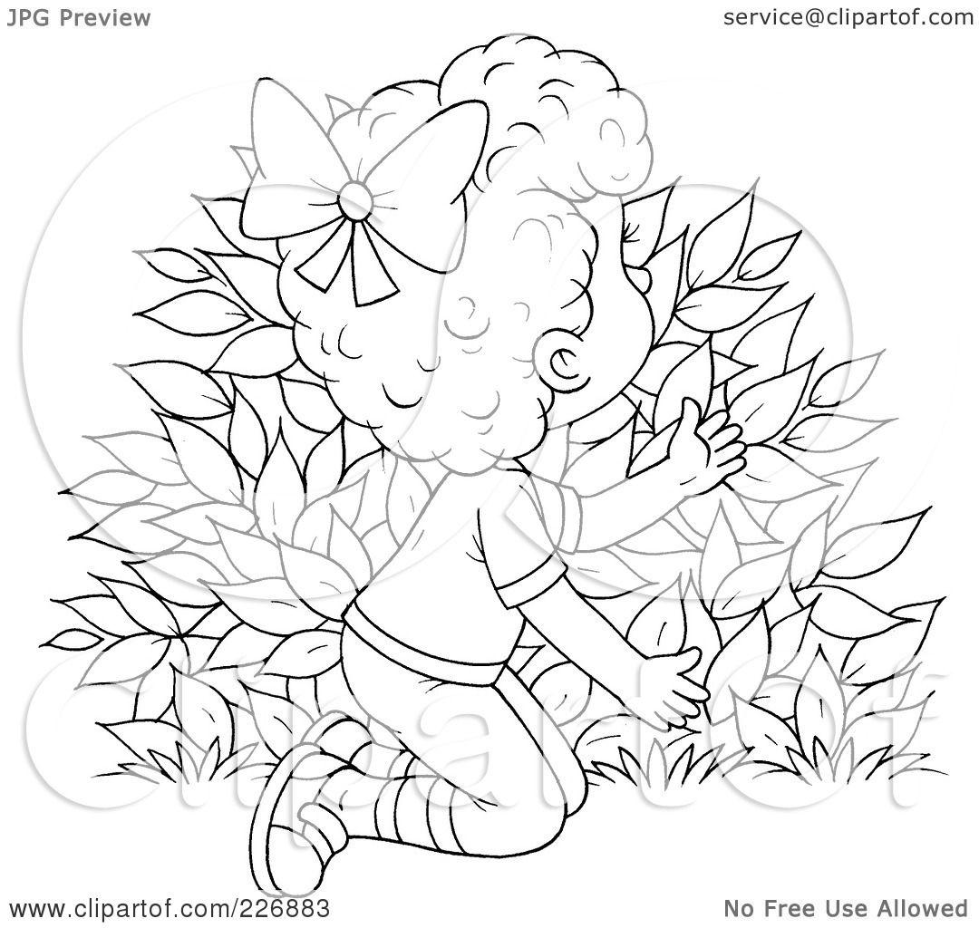 Rose Bush coloring #7, Download drawings