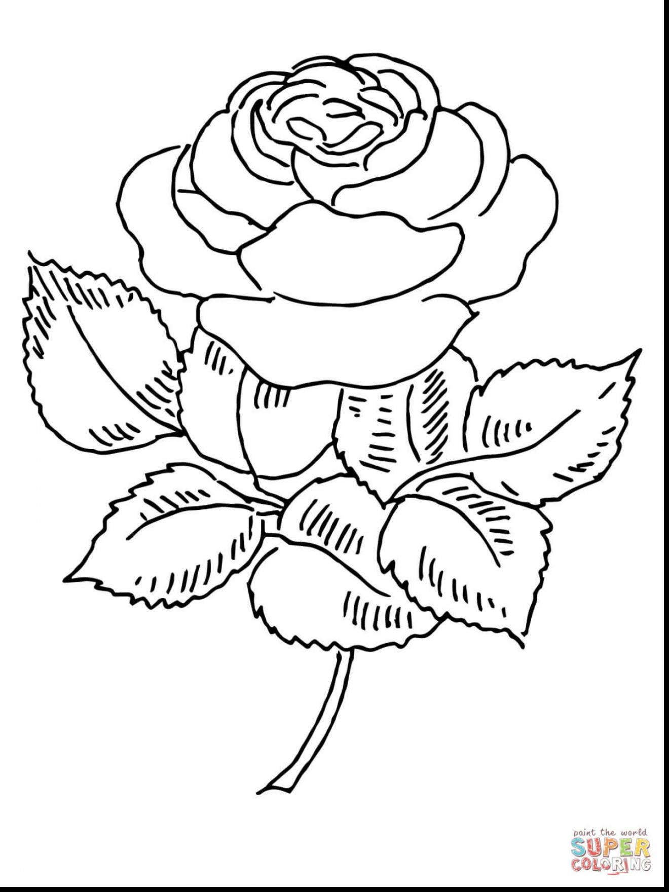 Rose Bush coloring #10, Download drawings
