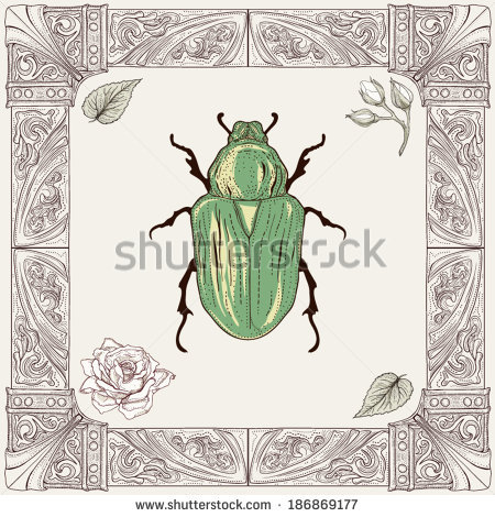 Rose Chafer coloring #20, Download drawings