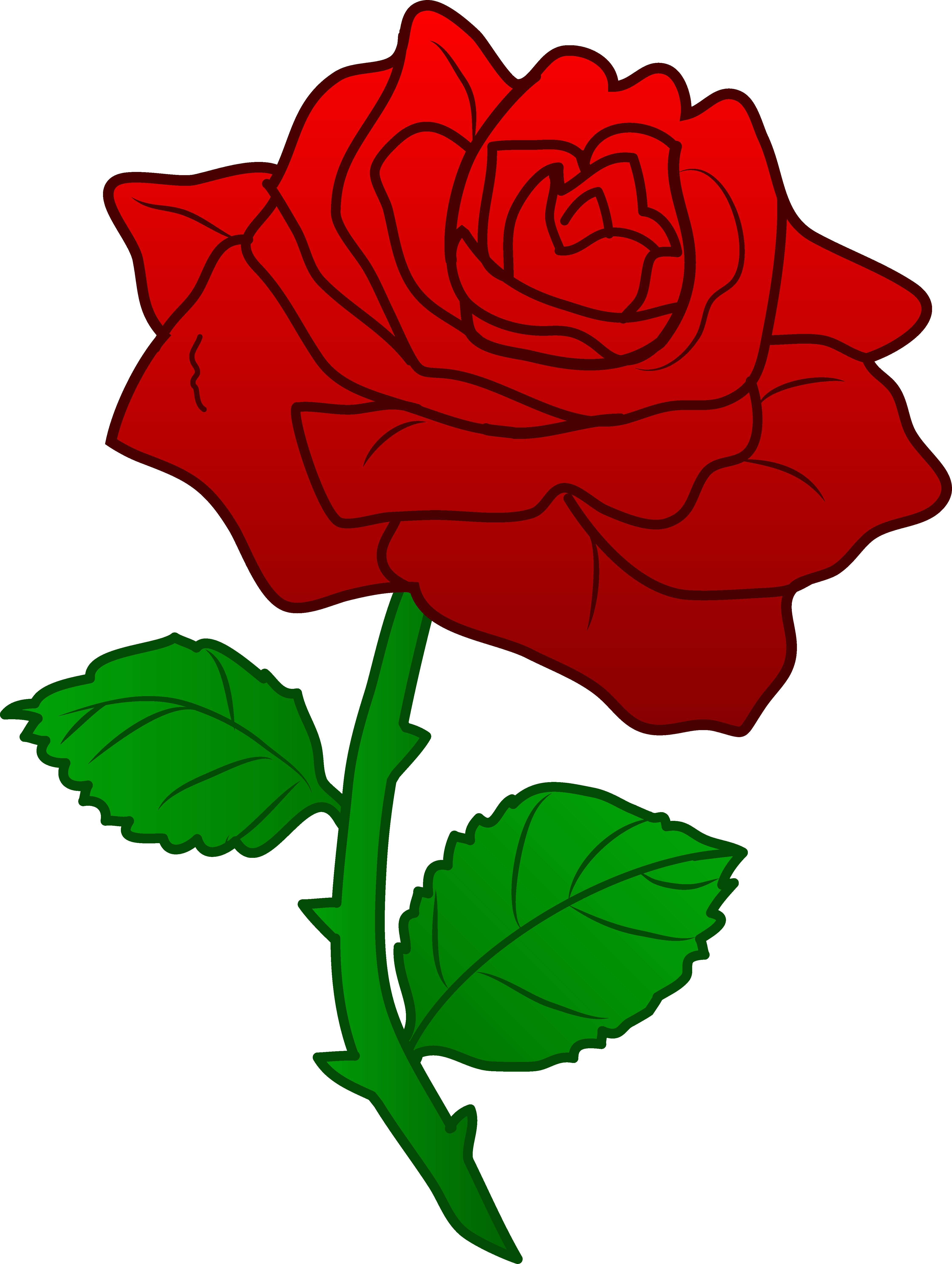 Rose clipart #4, Download drawings