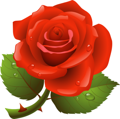 Rose clipart #16, Download drawings