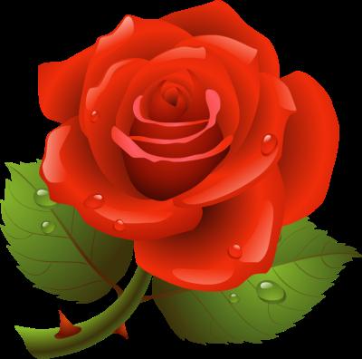 Rose clipart #16, Download drawings