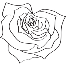 Rose coloring #18, Download drawings