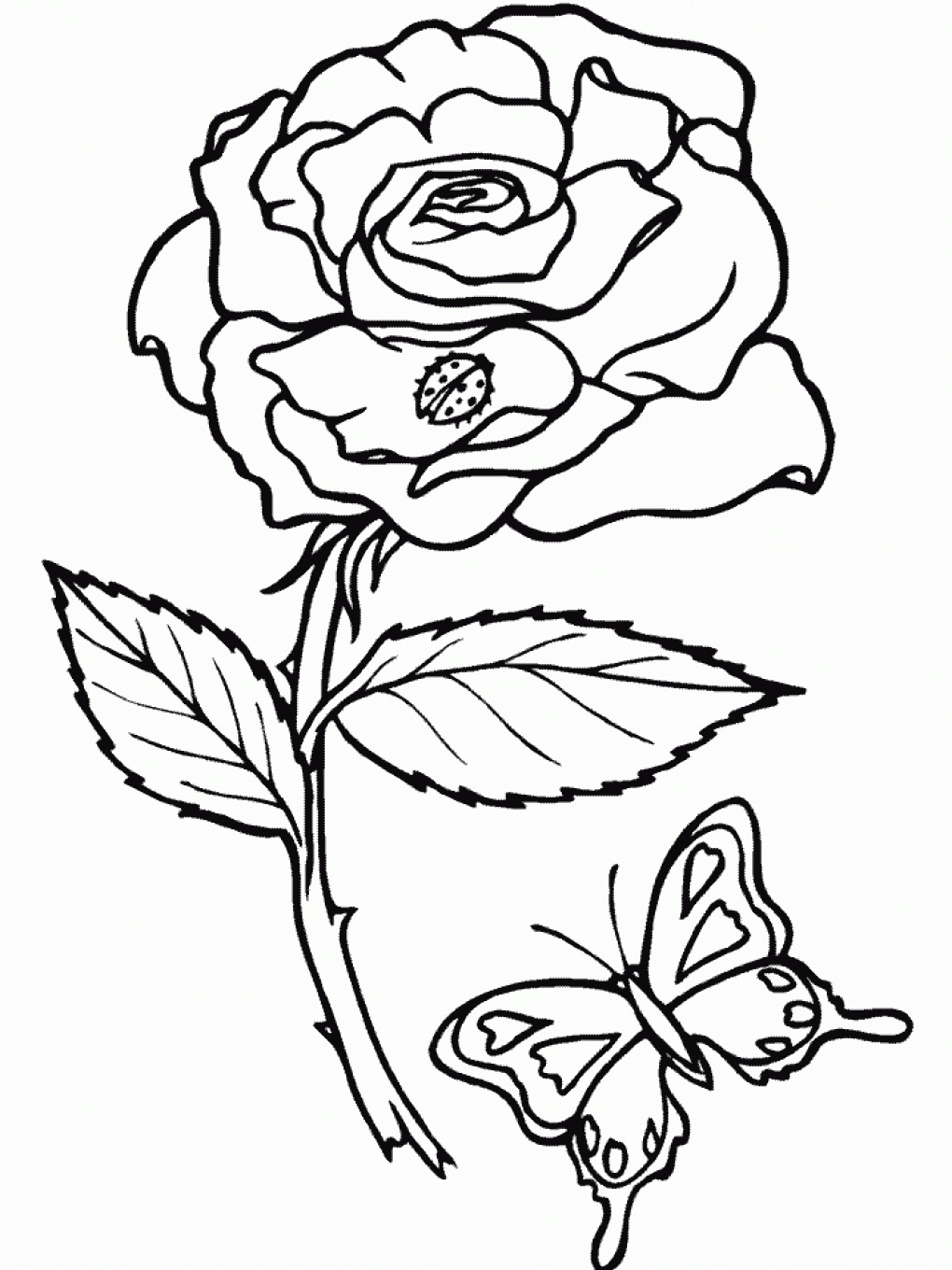 Rose coloring #12, Download drawings