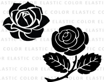 White Rose svg #18, Download drawings