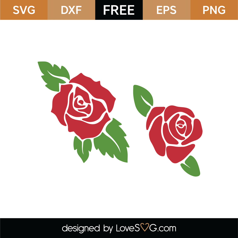 rose svg free #573, Download drawings
