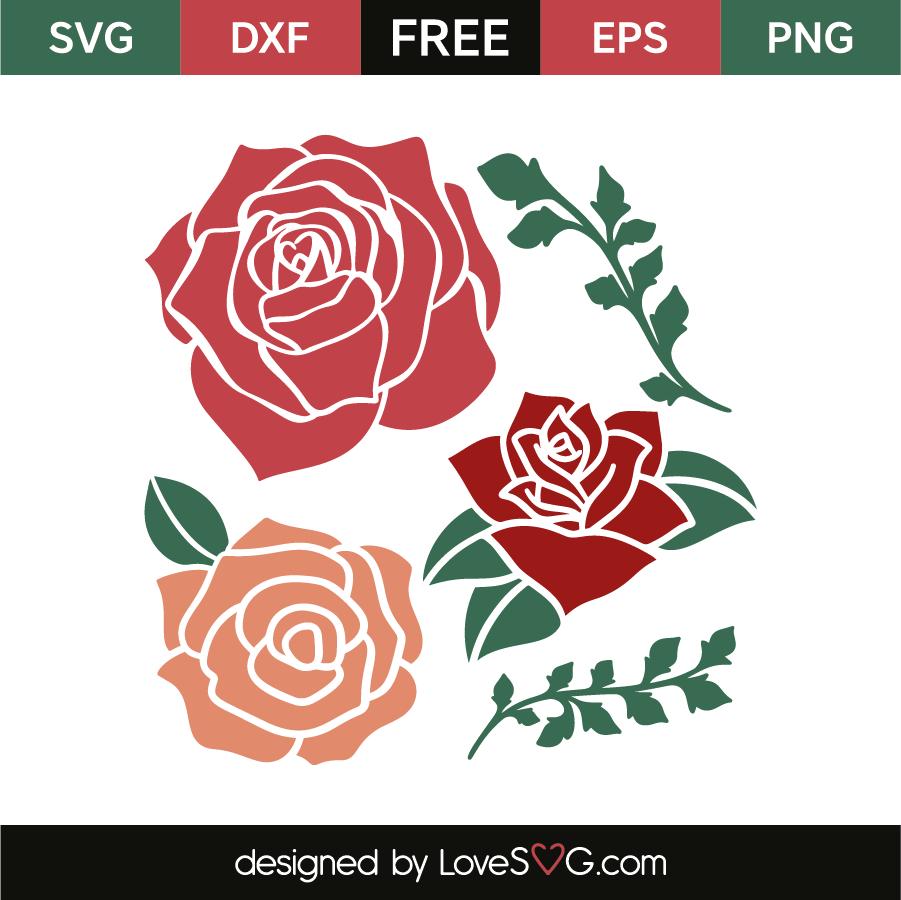 rose svg free #571, Download drawings