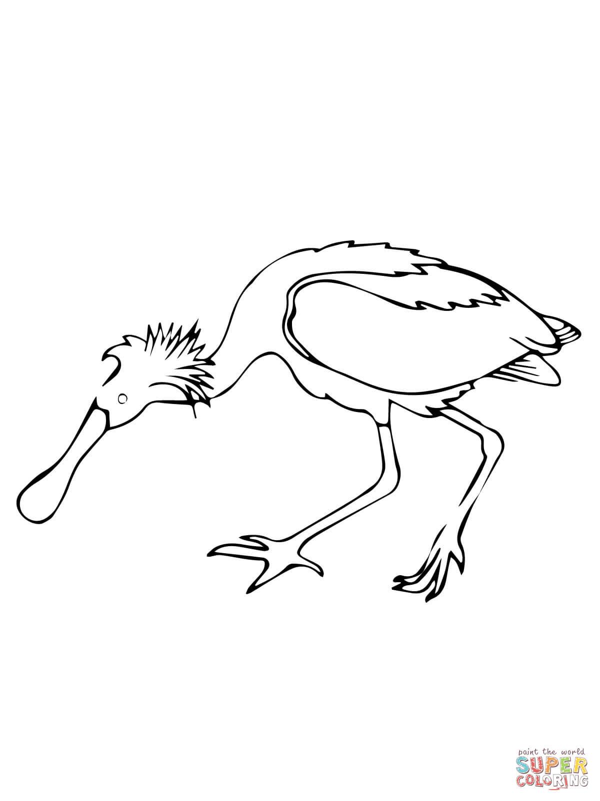 Roseate Spoonbill coloring #12, Download drawings