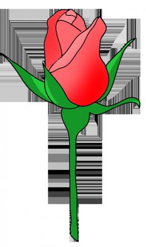 Rosebud clipart #11, Download drawings