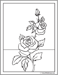 Rosebud coloring #14, Download drawings