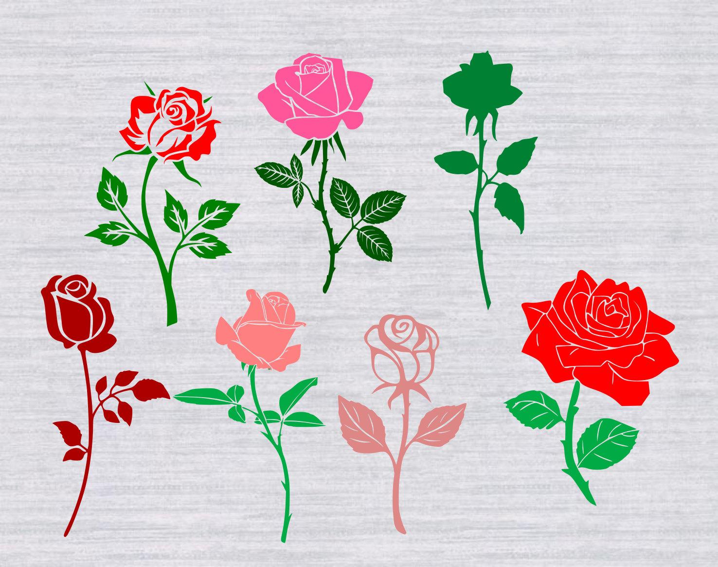 Rosella svg #2, Download drawings