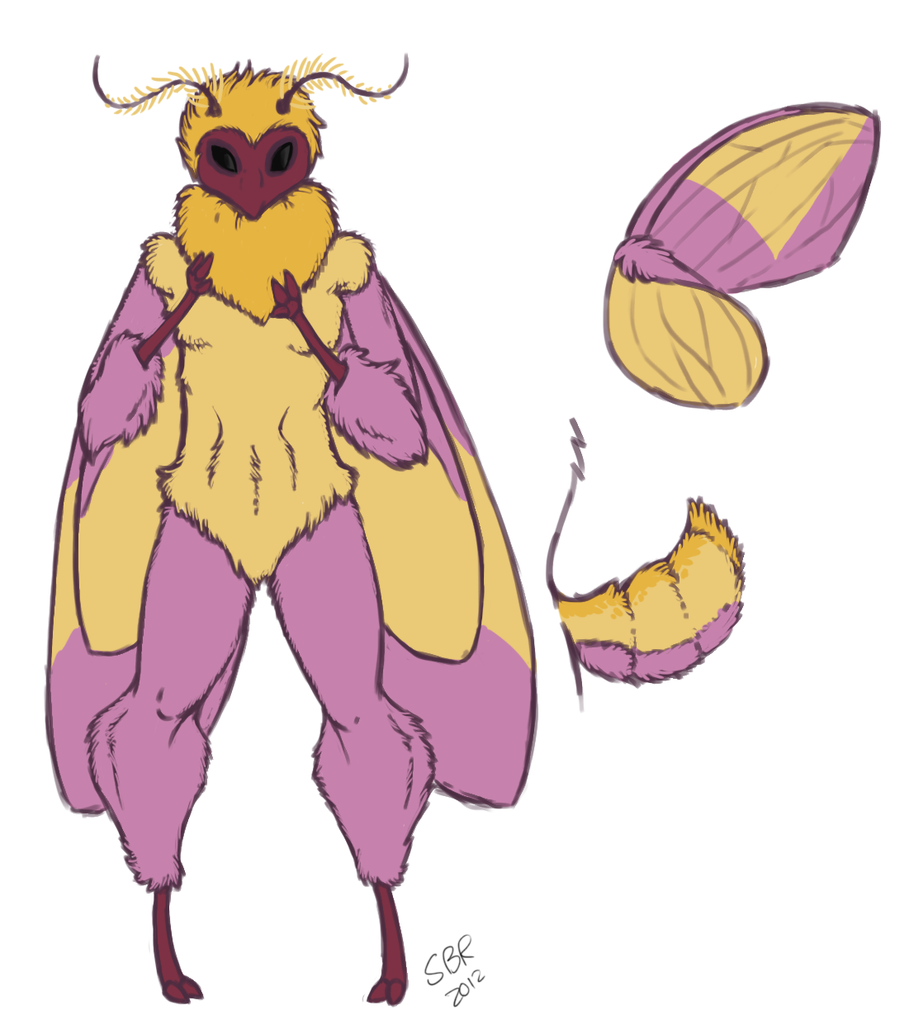 Rosy Maple Moth clipart #18, Download drawings
