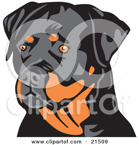 Rottweiler clipart #2, Download drawings