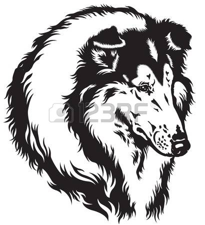 Rough Collie clipart #10, Download drawings