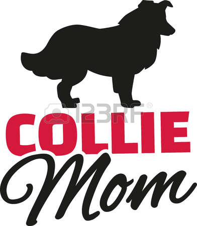 Rough Collie clipart #19, Download drawings