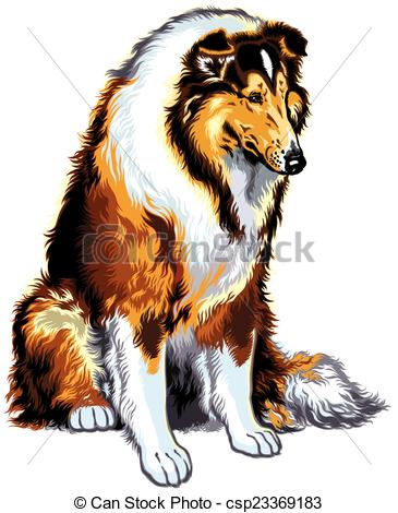 Rough Collie clipart #17, Download drawings