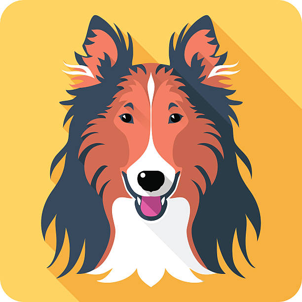 Rough Collie clipart #4, Download drawings