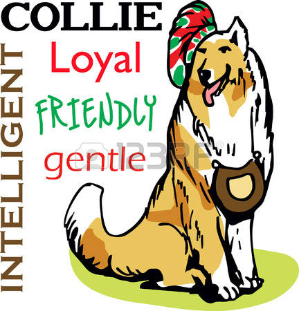 Rough Collie clipart #13, Download drawings