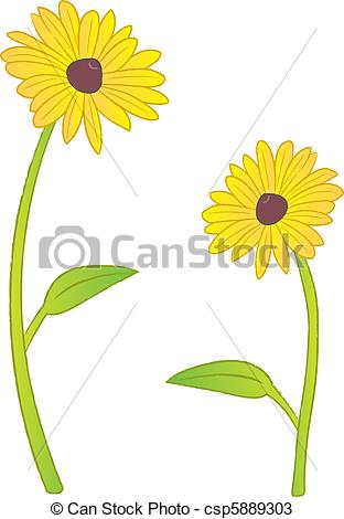 Rudbeckia clipart #14, Download drawings