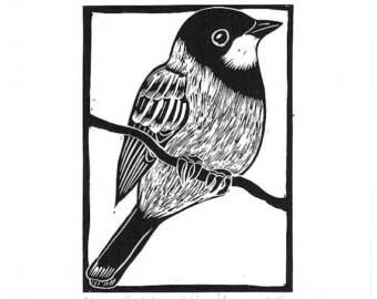 Rufous Whistler clipart #10, Download drawings