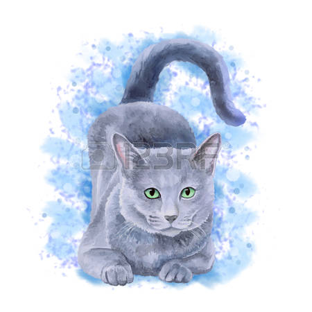 Russian Blue clipart #10, Download drawings