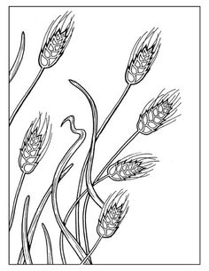 Rye coloring #3, Download drawings