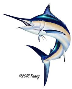 Sailfish clipart #3, Download drawings