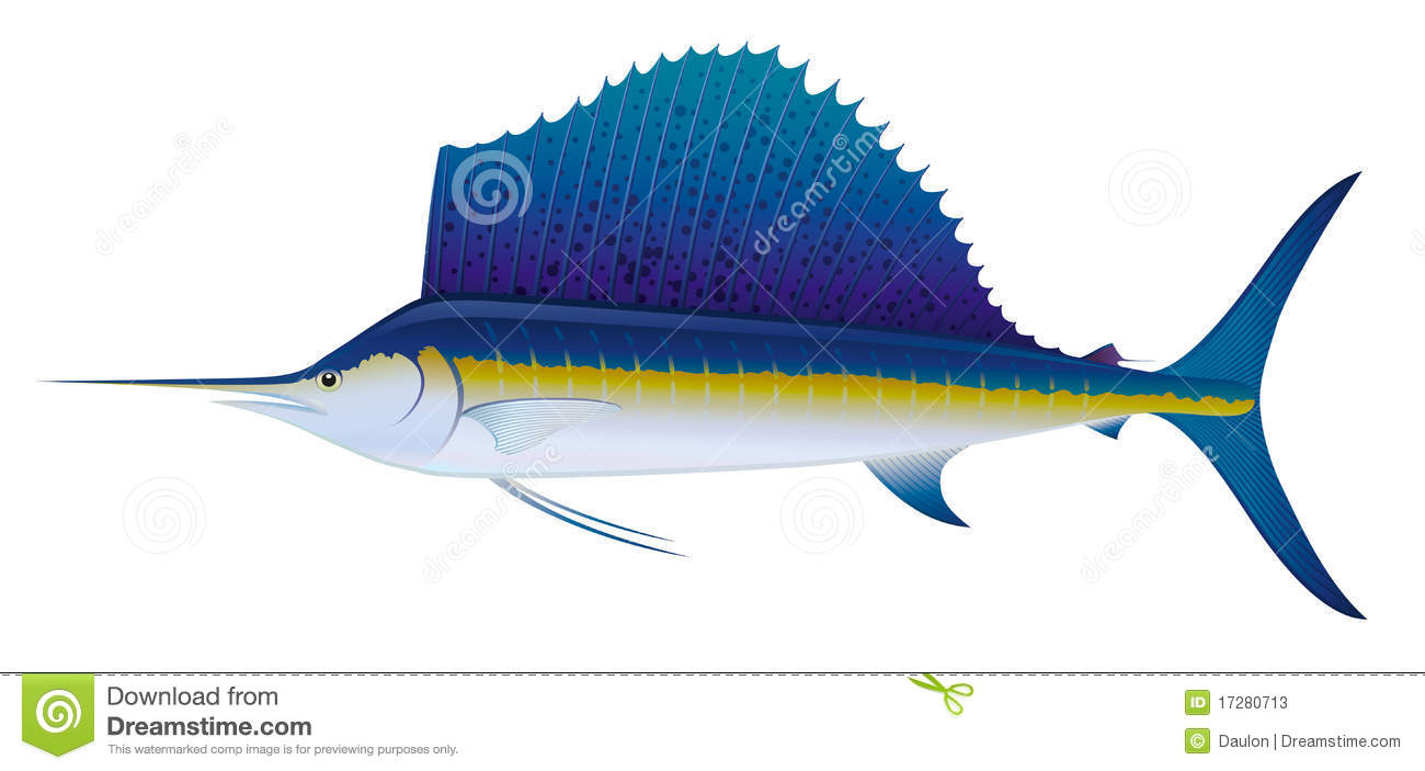 Sailfish clipart #8, Download drawings