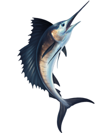 Sailfish clipart #13, Download drawings