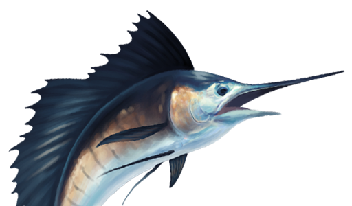 Sailfish clipart #20, Download drawings