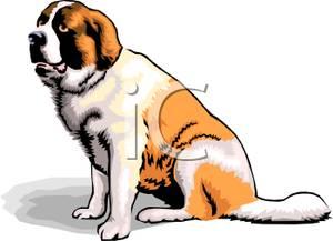 Saint Bernard clipart #9, Download drawings