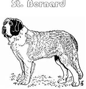 St. Bernard coloring #12, Download drawings